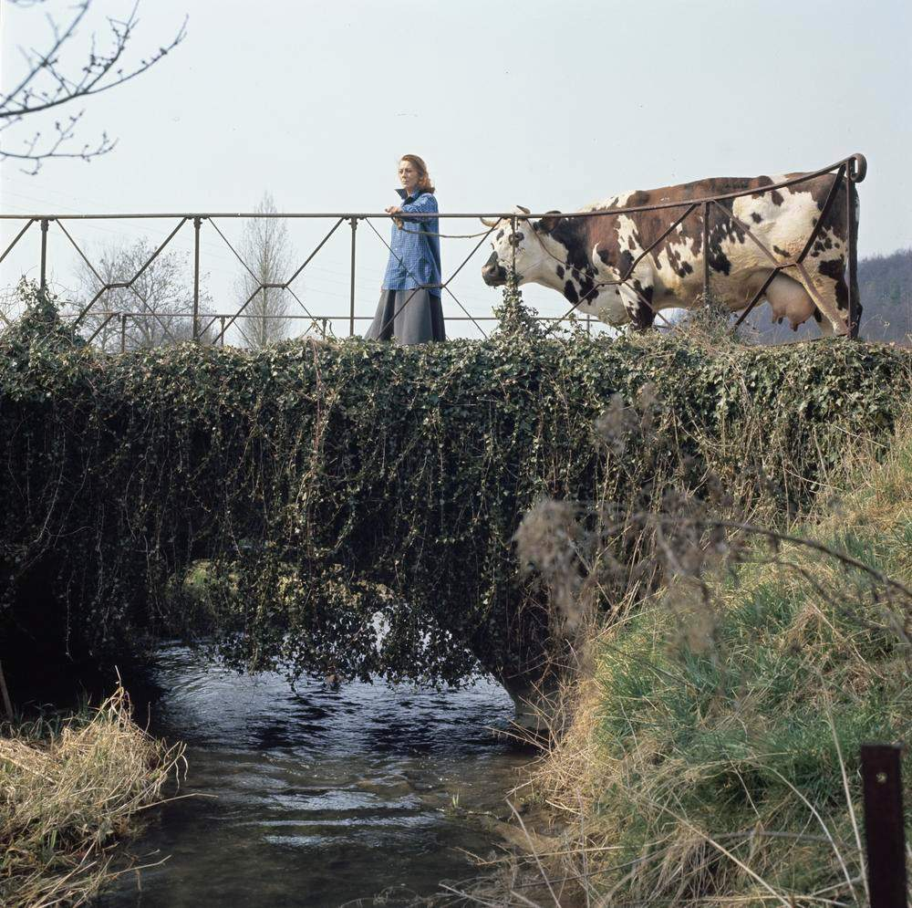 Boerin in Frankrijk